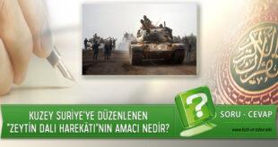 """Kuzey Suriye'ye Düzenlenen """"Zeytin Dalı Harekâtı""""nın Amacı Nedir?"""