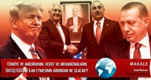 Türkiye ve Amerika'nın, Farklılıkların Üstesinden Gelindiğini, Hedef ve Mekanizmaların Örtüştüğünü İlan Etmesinin Ardından Ne Olacak?!