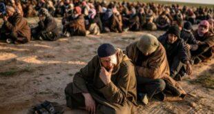 ABD'den Türkiye'ye suçlama: Çok sayıda IŞİD tutuklusu serbest kaldı