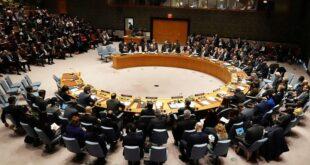 ABD BM Güvenlik Konseyi, ABD ve Rusya'nın vetosu ile Türkiye'yi kınayamadı