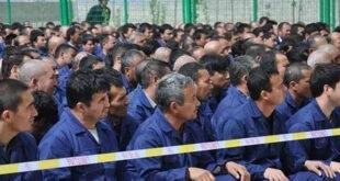 Çin'in toplama kampları nedeniyle Doğu Türkistan nüfusu hızla azalıyor